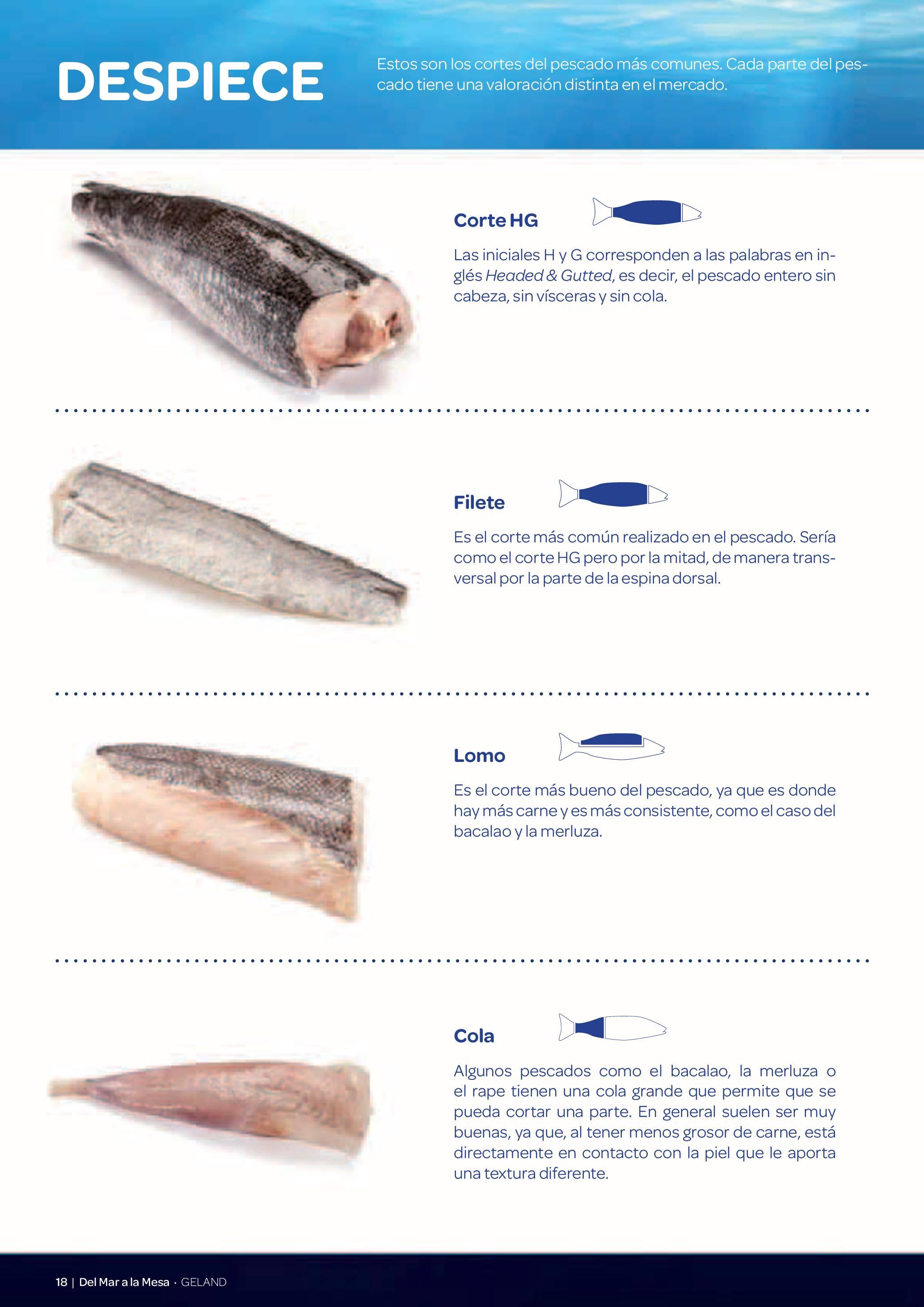 Gama Productos del Mar - Pag. 018