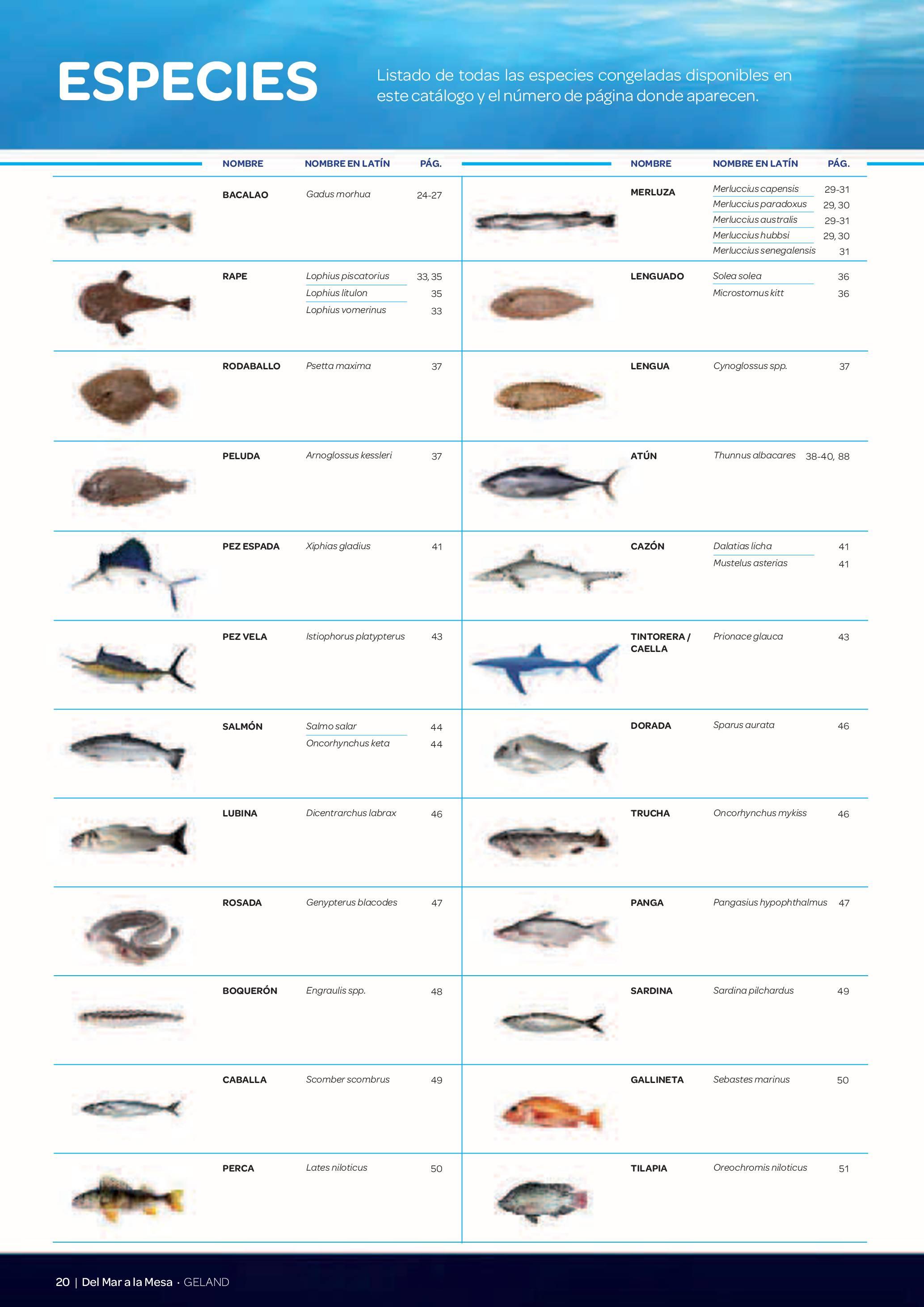 Gama Productos del Mar - Pag. 020
