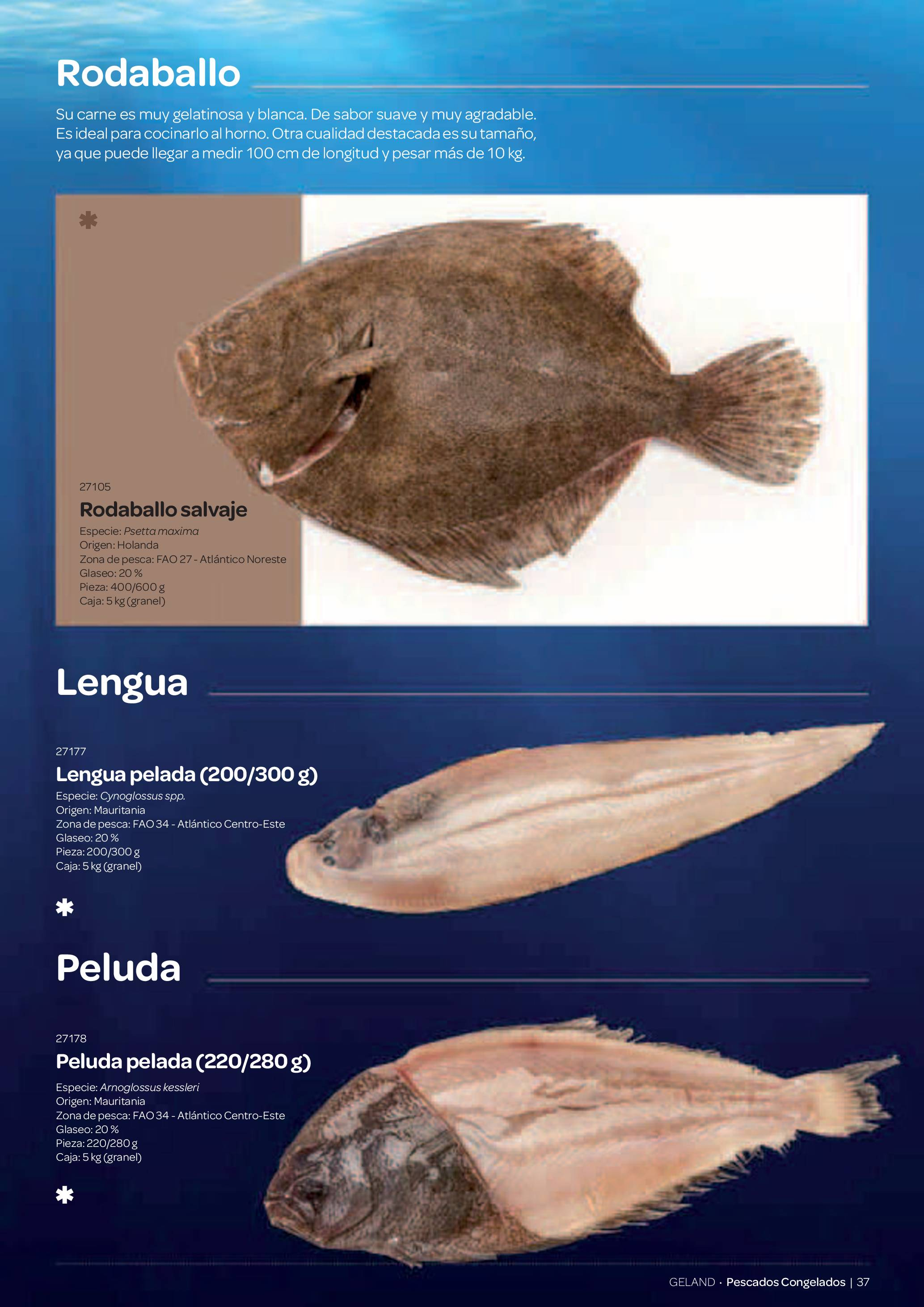 Gama Productos del Mar - Pag. 037