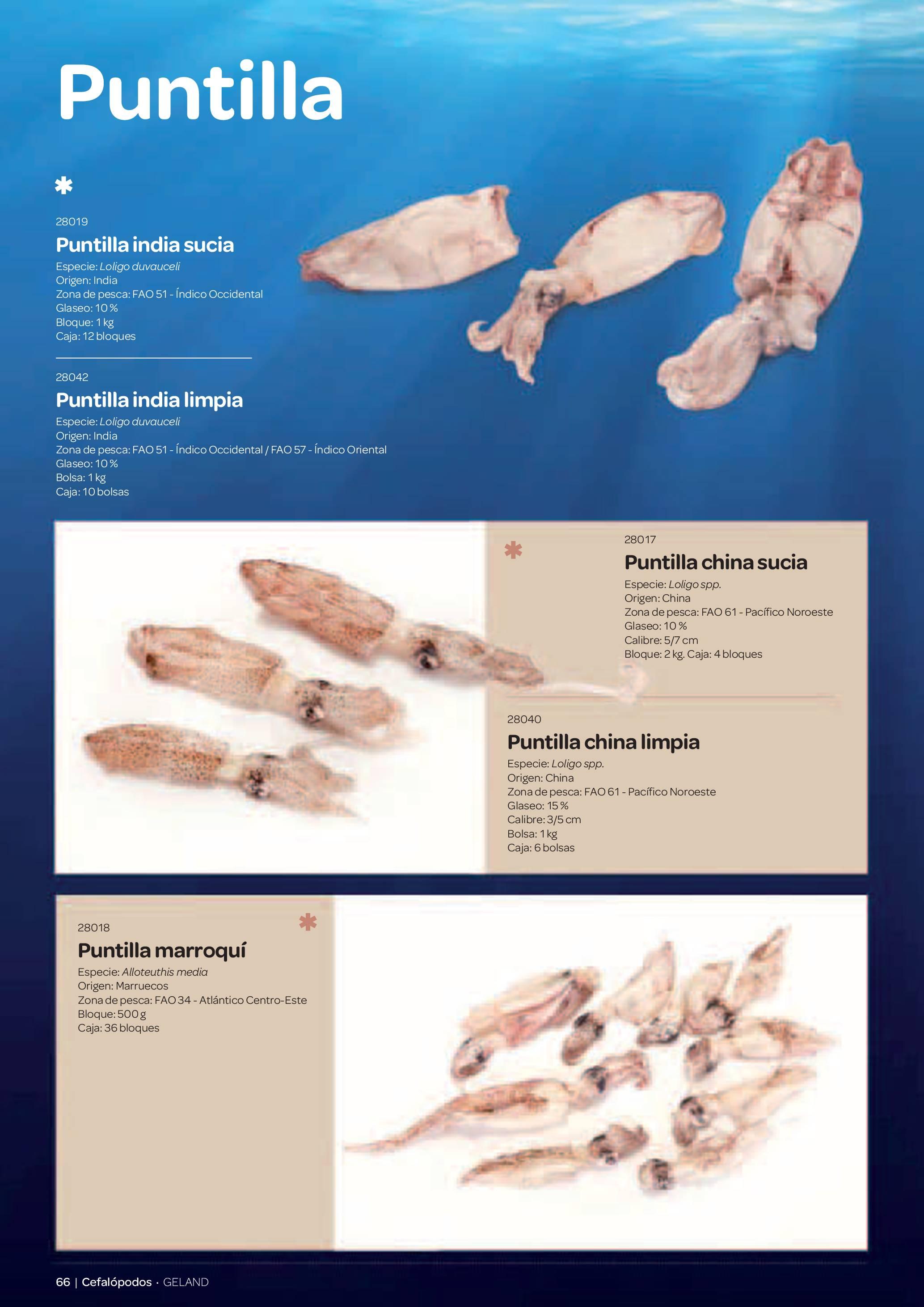 Gama Productos del Mar - Pag. 066