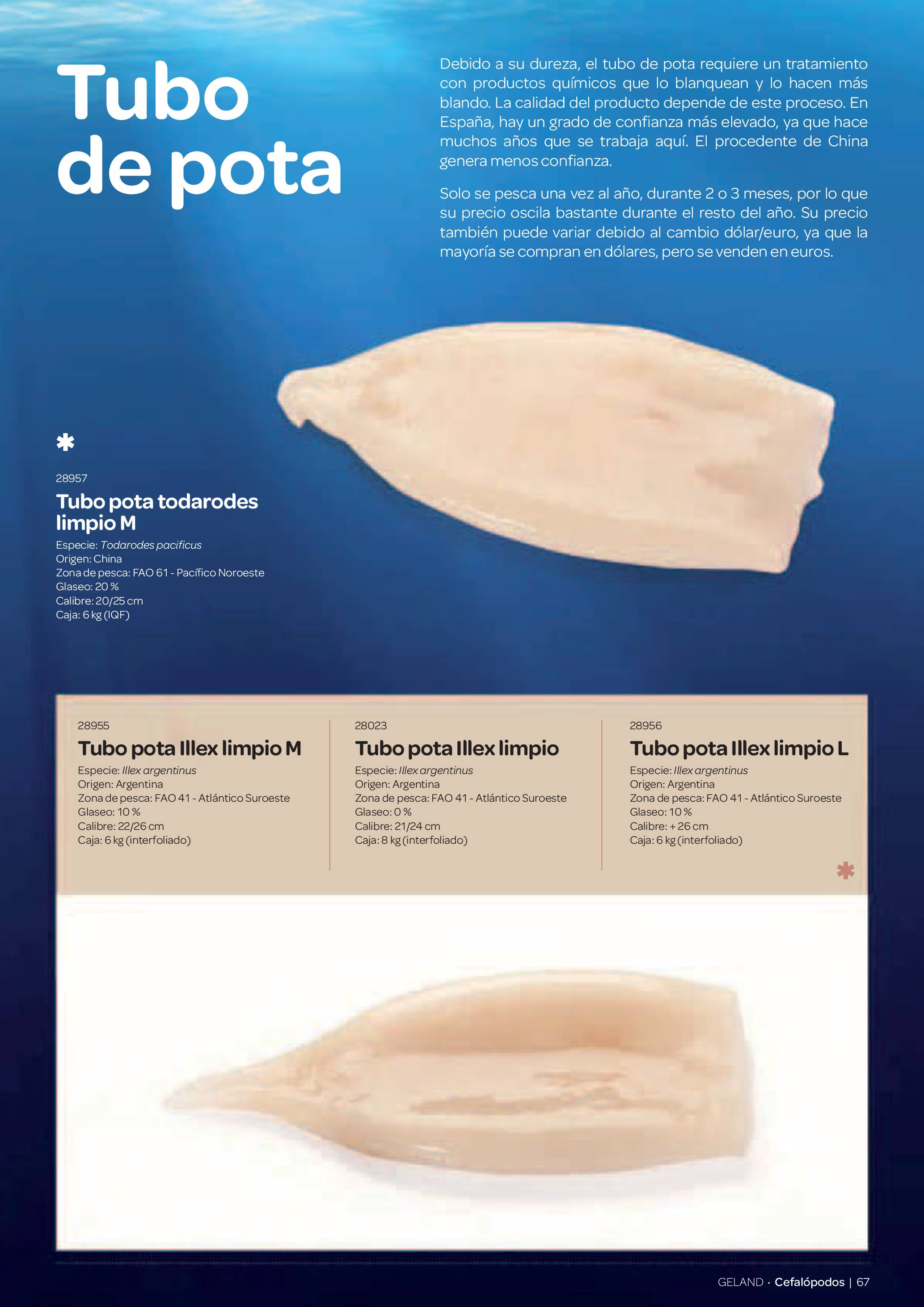 Gama Productos del Mar - Pag. 067