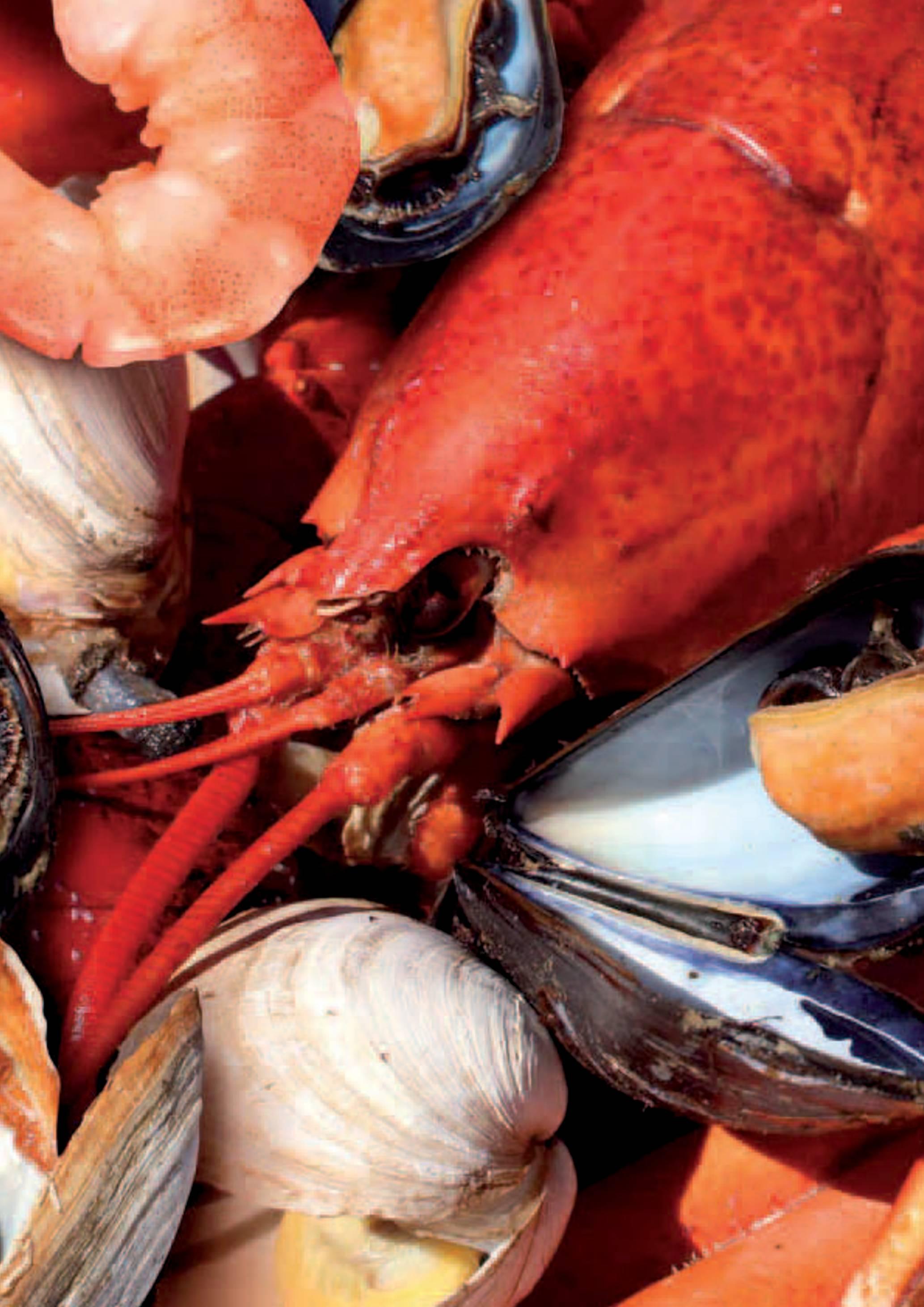 Gama Productos del Mar - Pag. 072