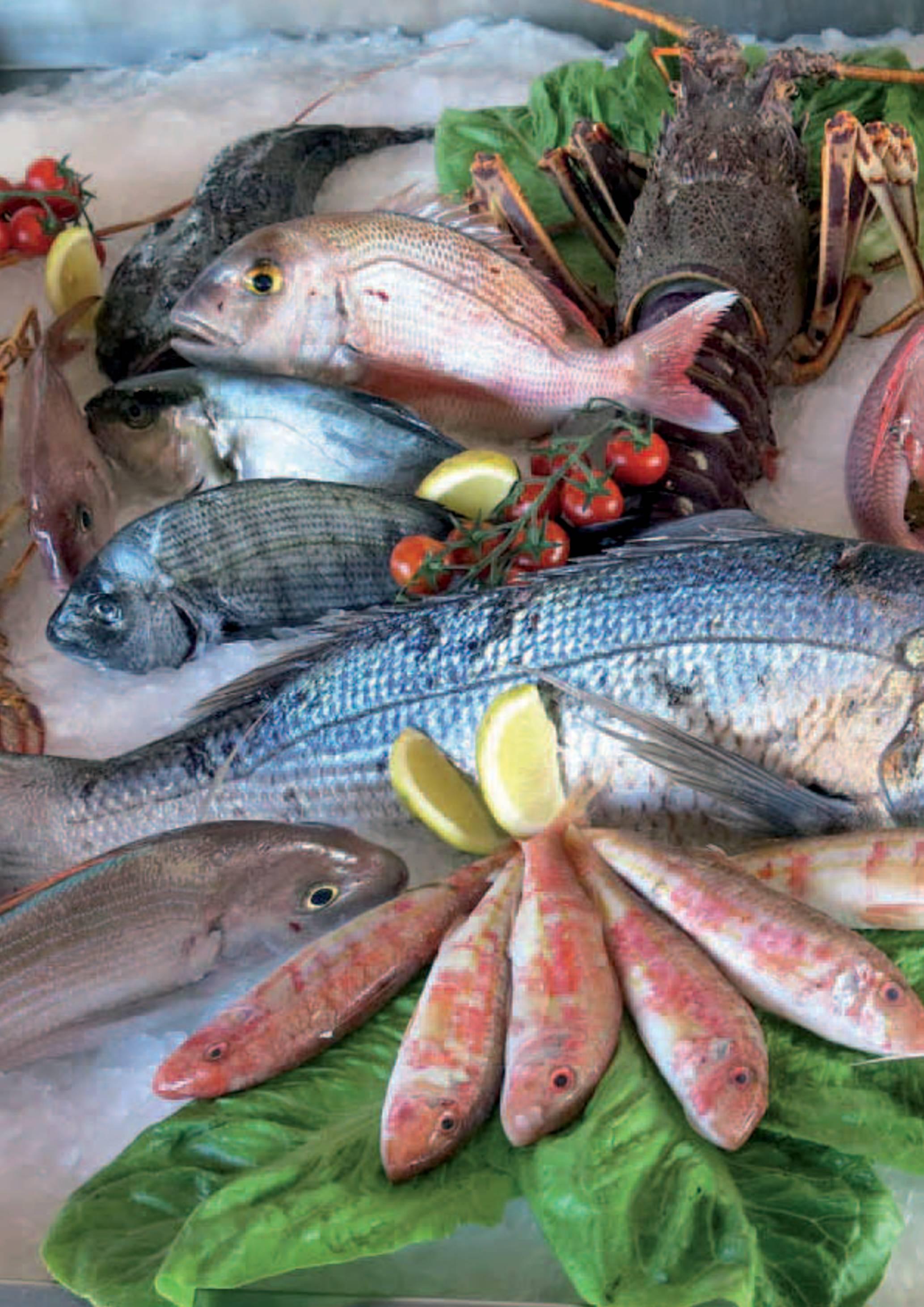 Gama Productos del Mar - Pag. 092