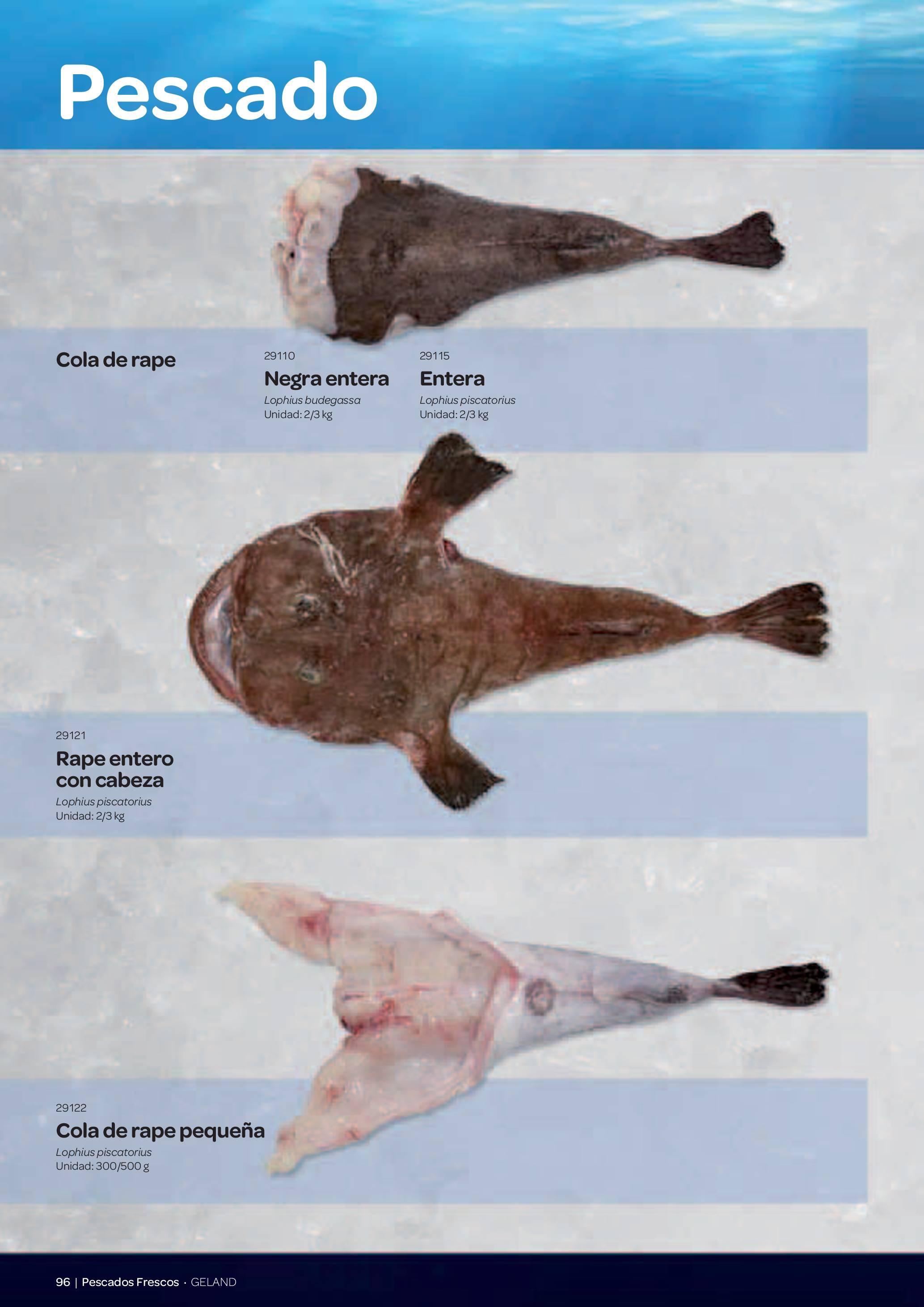 Gama Productos del Mar - Pag. 096