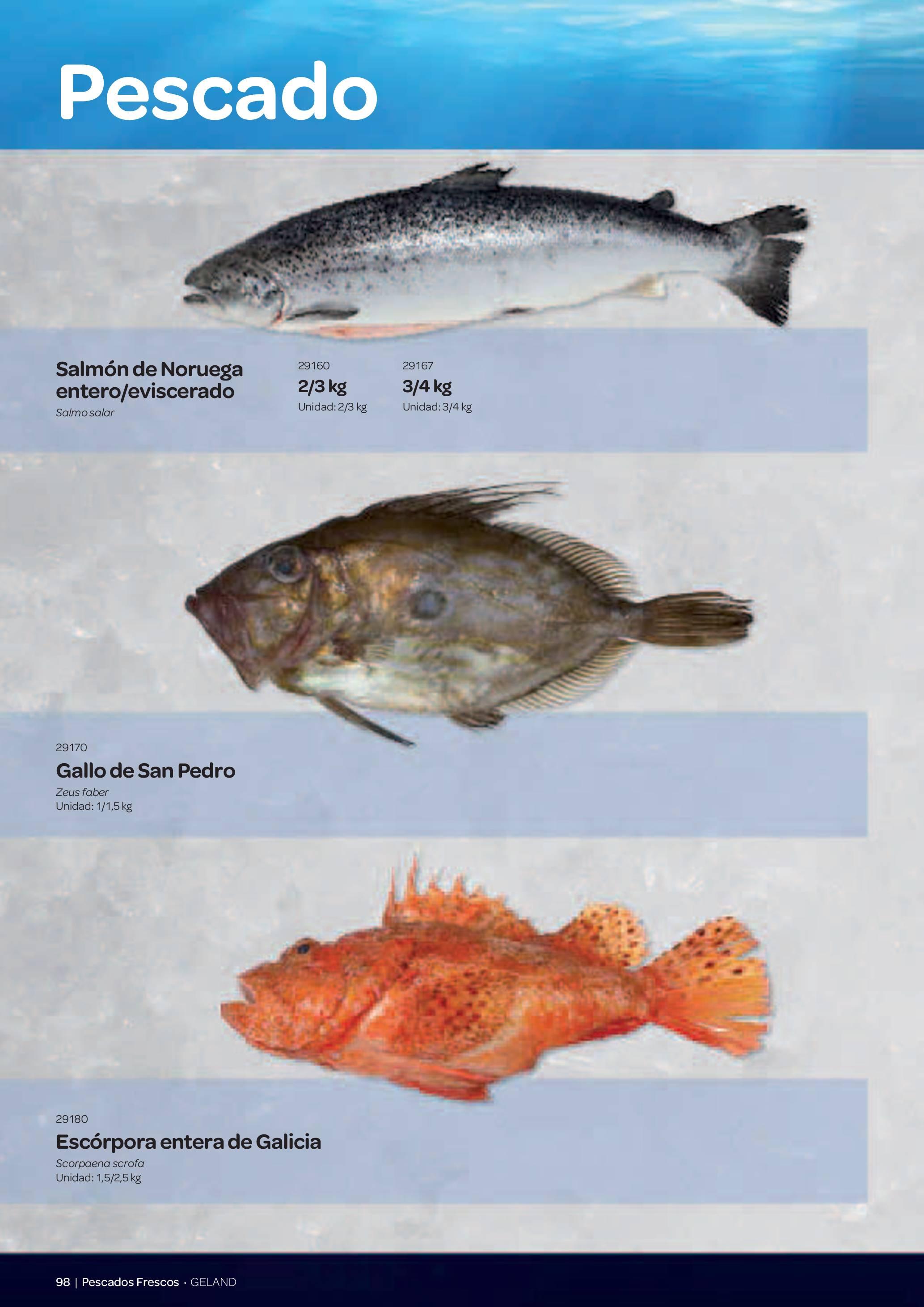 Gama Productos del Mar - Pag. 098