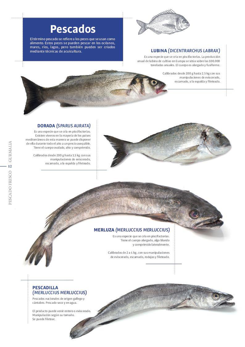 Catálogo Pescado Fresco  - Pag. 012