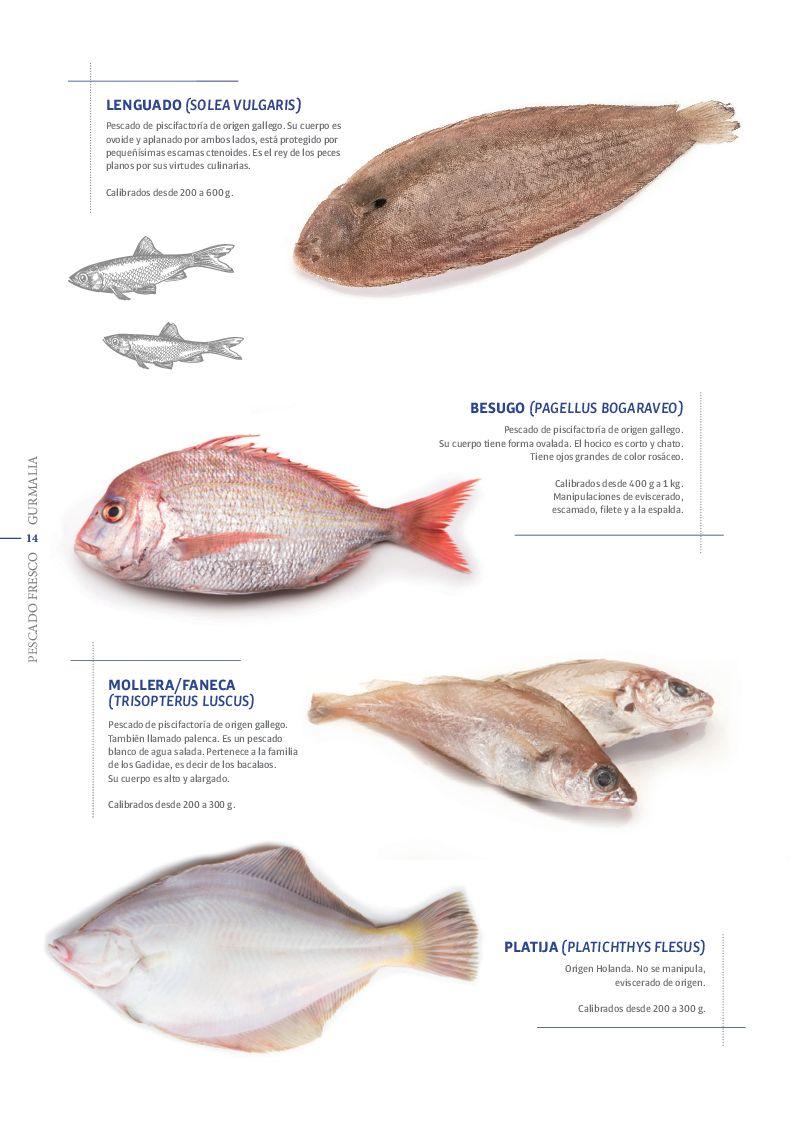 Catálogo Pescado Fresco  - Pag. 014