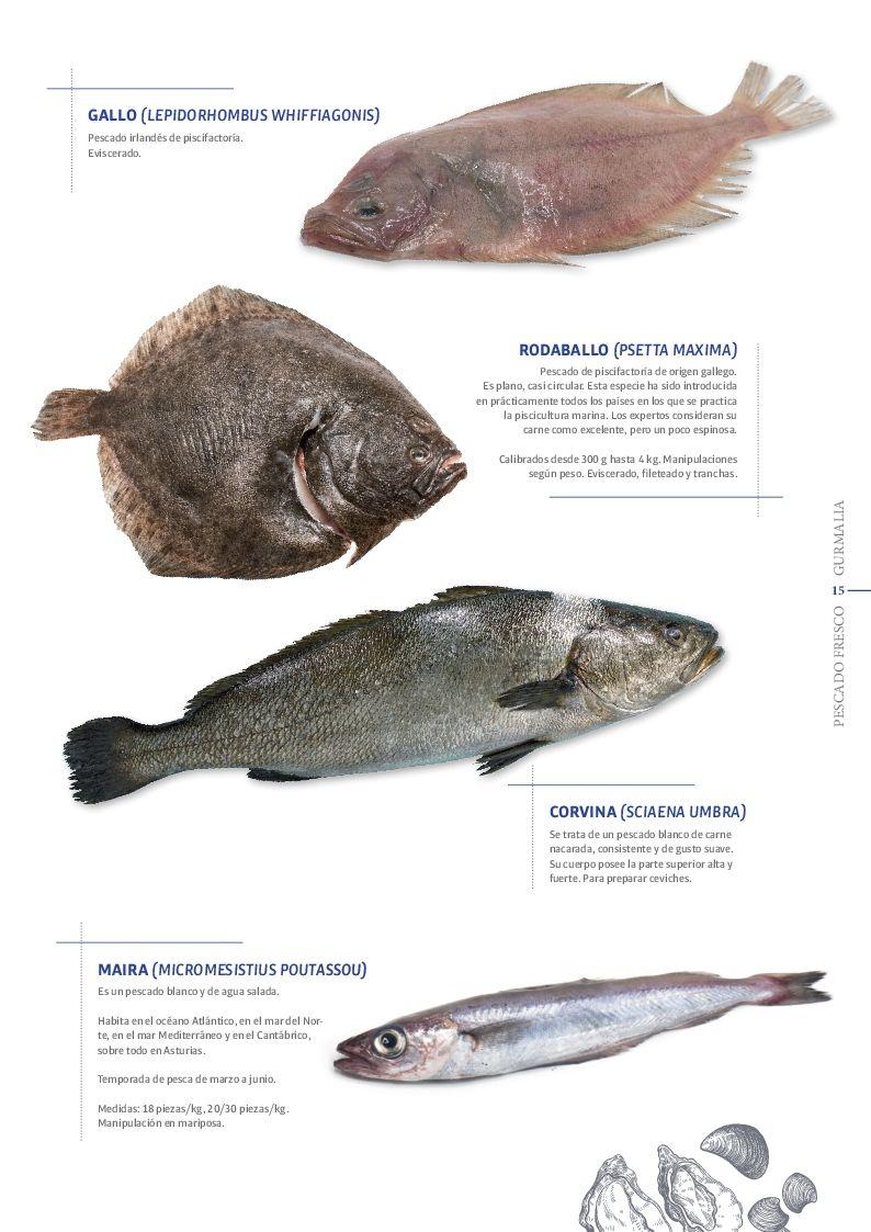 Catálogo Pescado Fresco  - Pag. 015