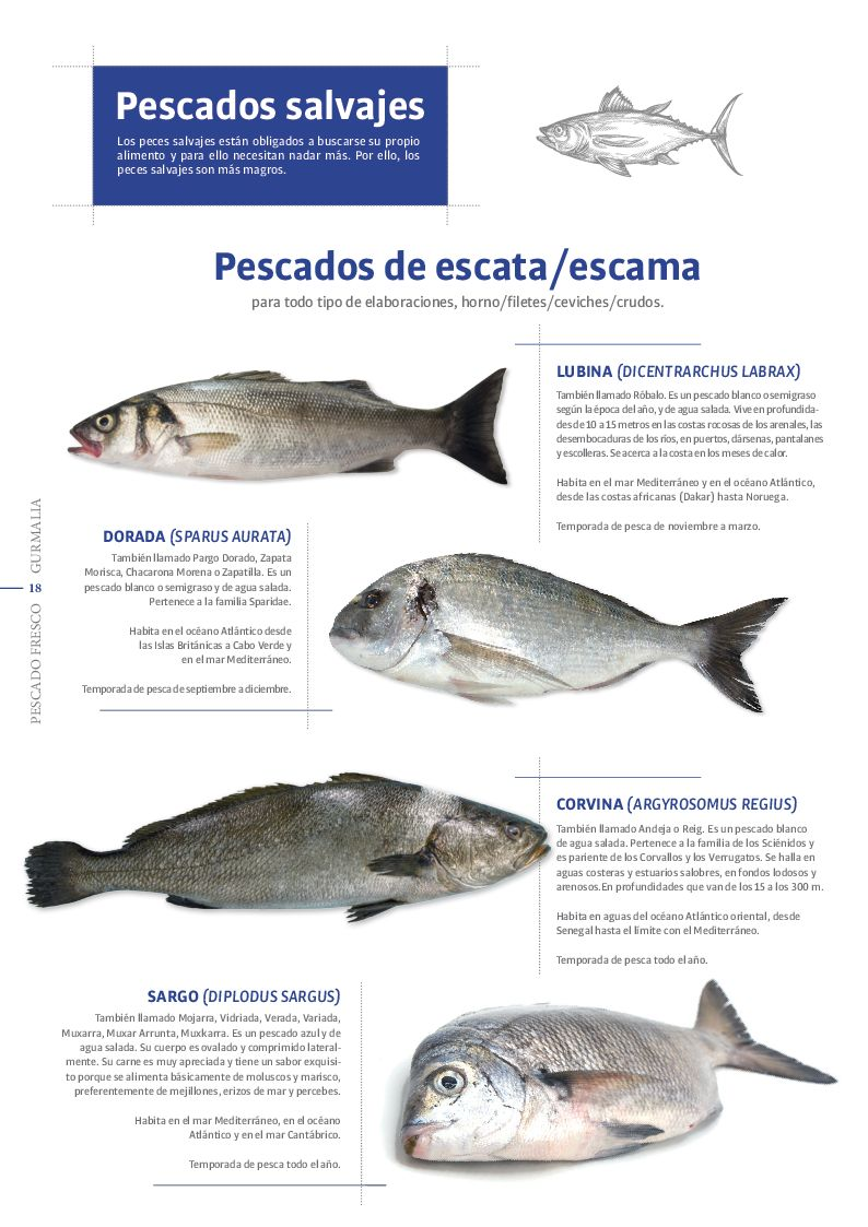 Catálogo Pescado Fresco  - Pag. 018