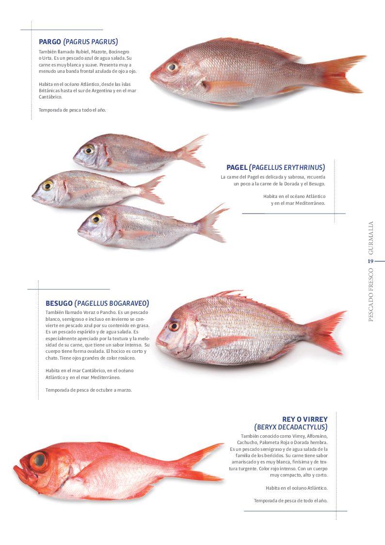 Catálogo Pescado Fresco  - Pag. 019