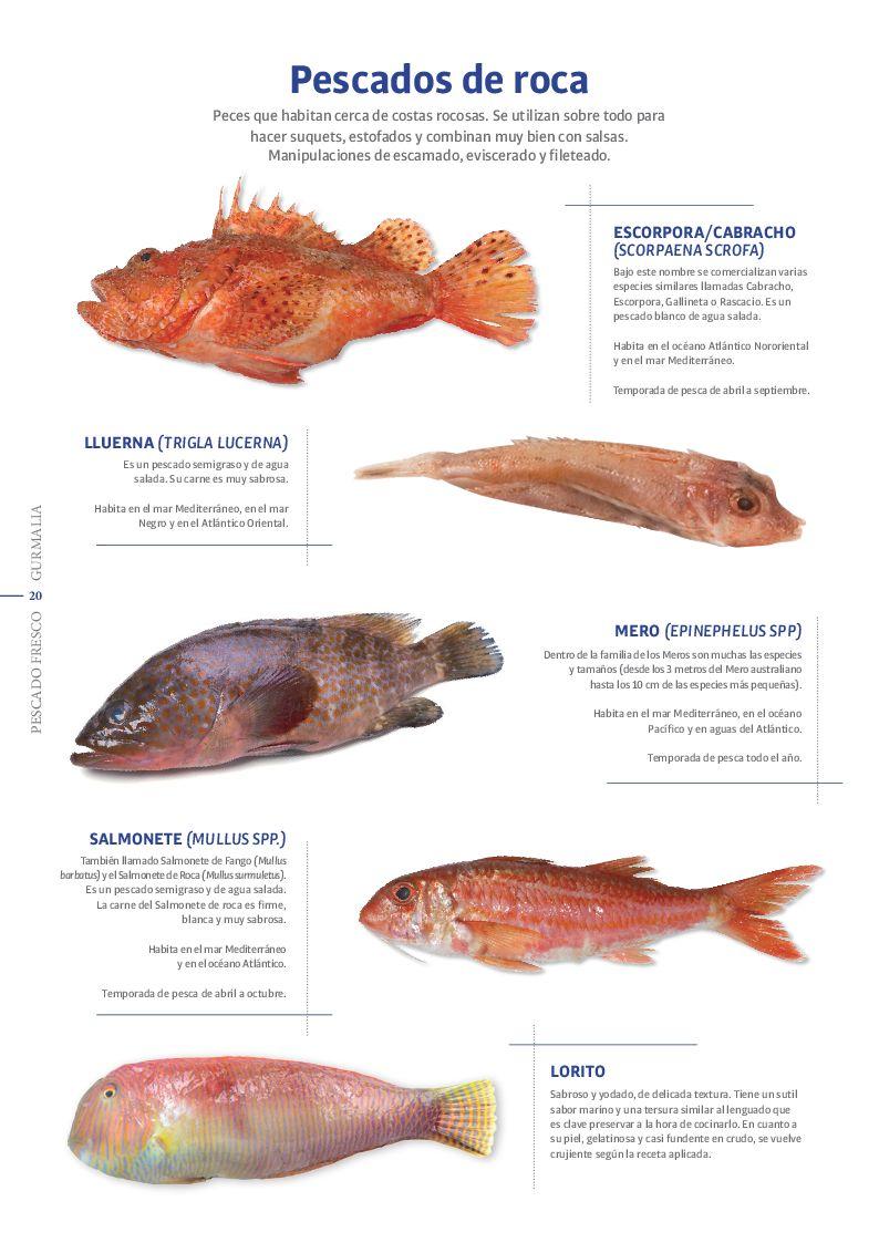 Catálogo Pescado Fresco  - Pag. 020
