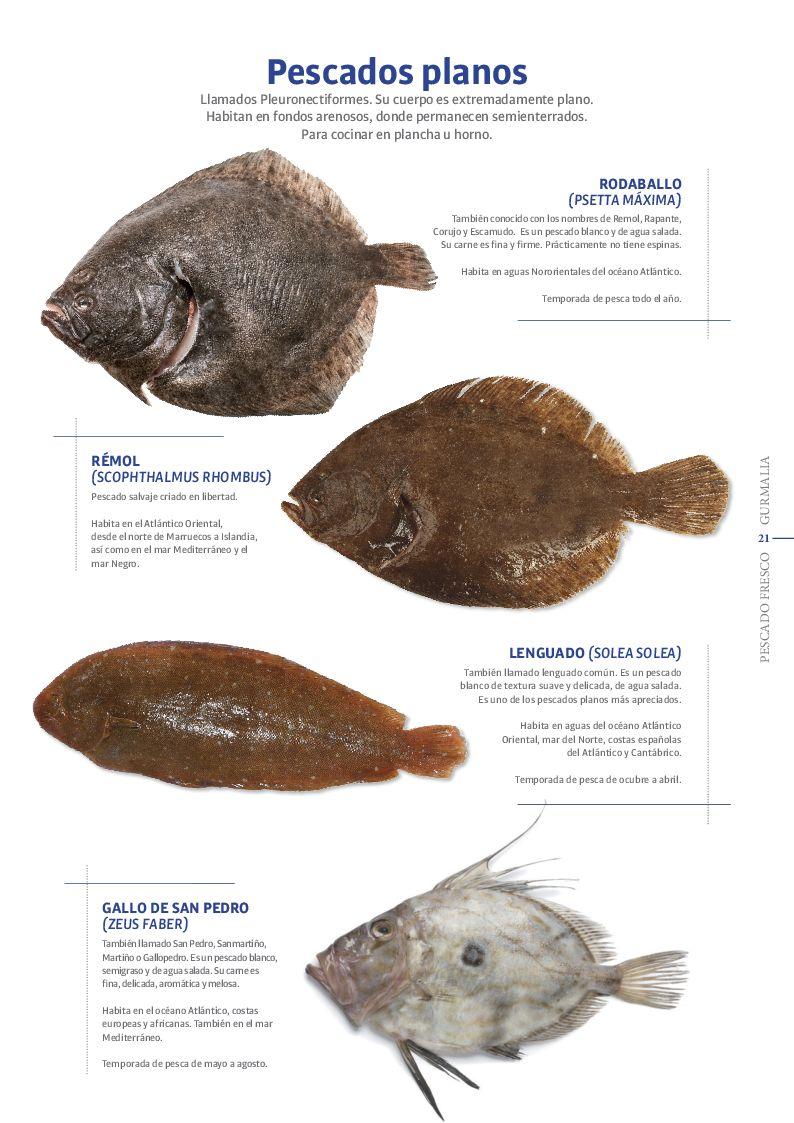Catálogo Pescado Fresco  - Pag. 021