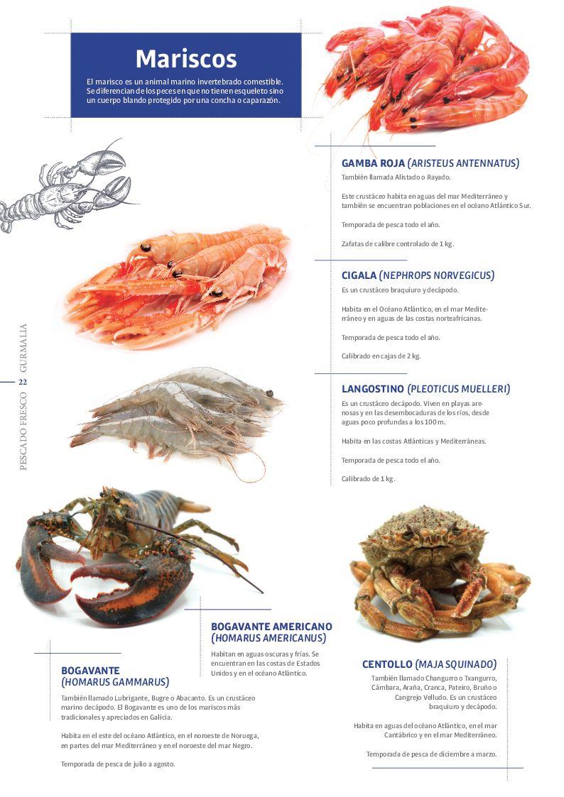Catálogo Pescado Fresco  - Pag. 022