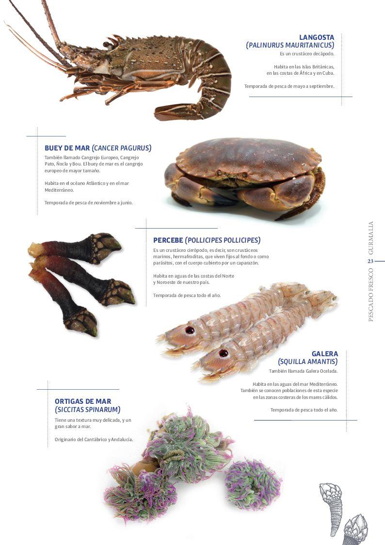 Catálogo Pescado Fresco  - Pag. 023