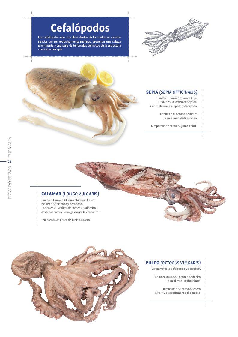 Catálogo Pescado Fresco  - Pag. 024