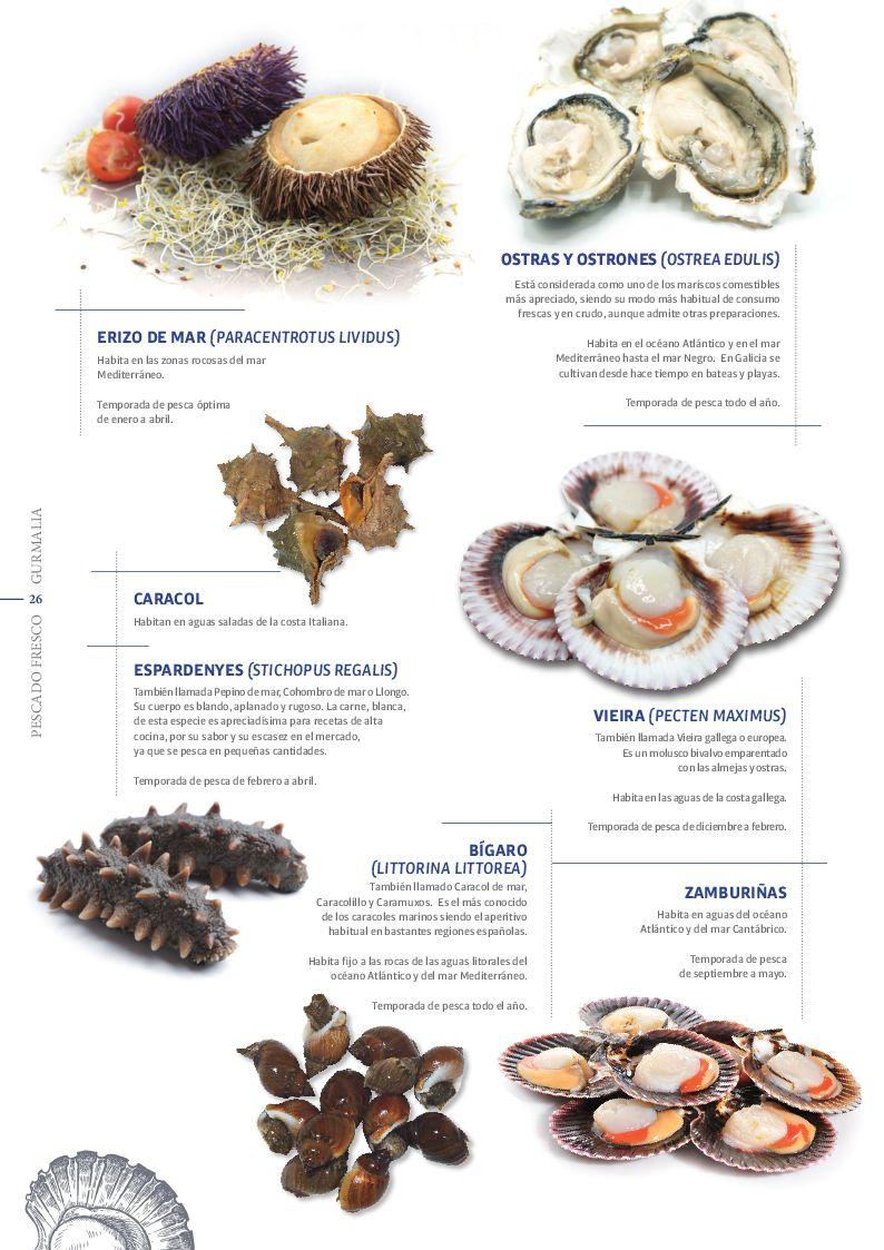 Catálogo Pescado Fresco  - Pag. 026