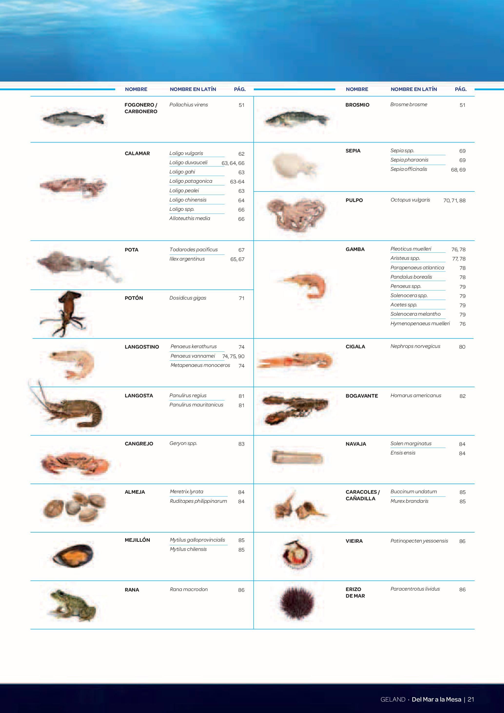 Gamma Productes del Mar - Pàg. 021