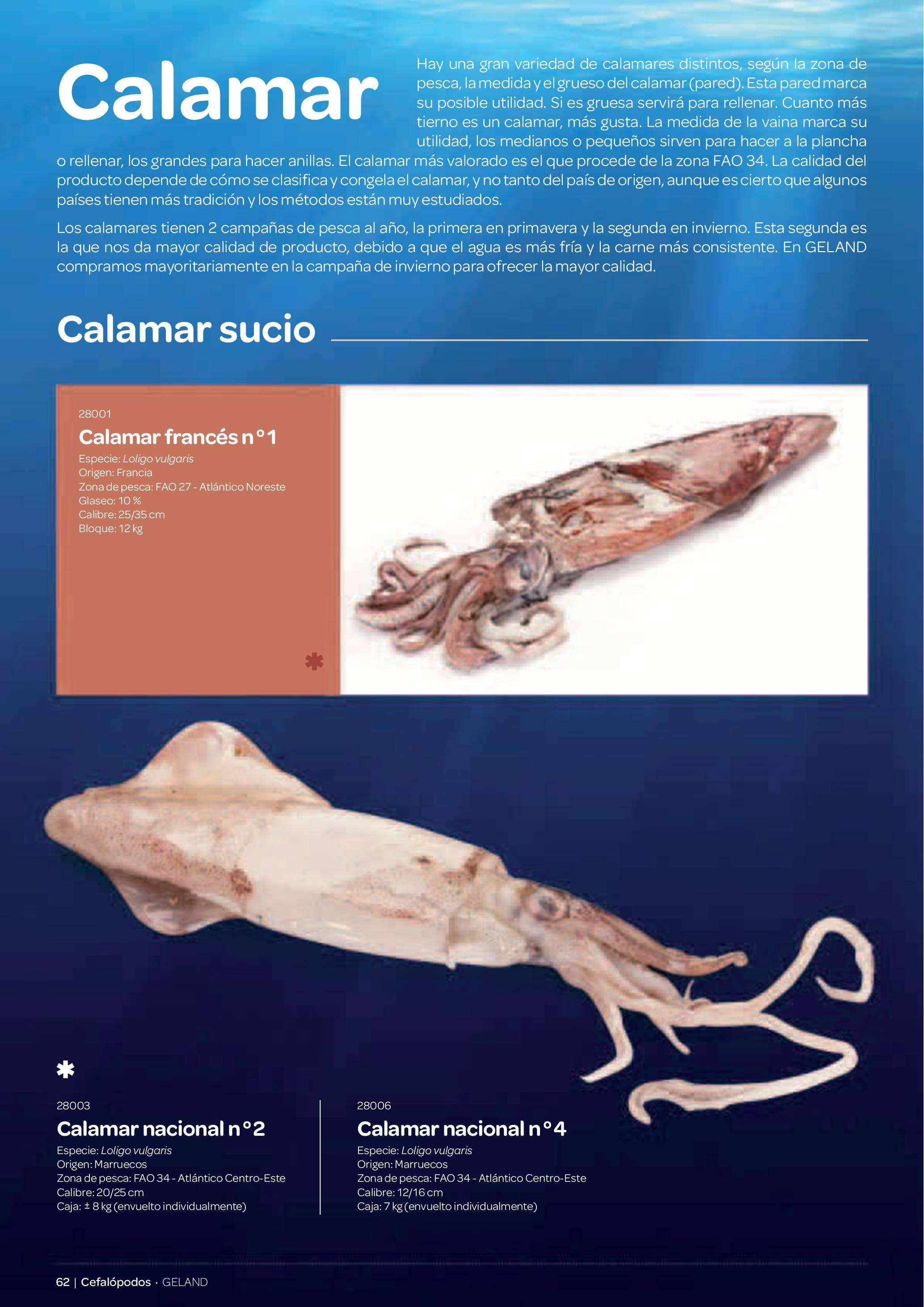 Gamma Productes del Mar - Pàg. 062