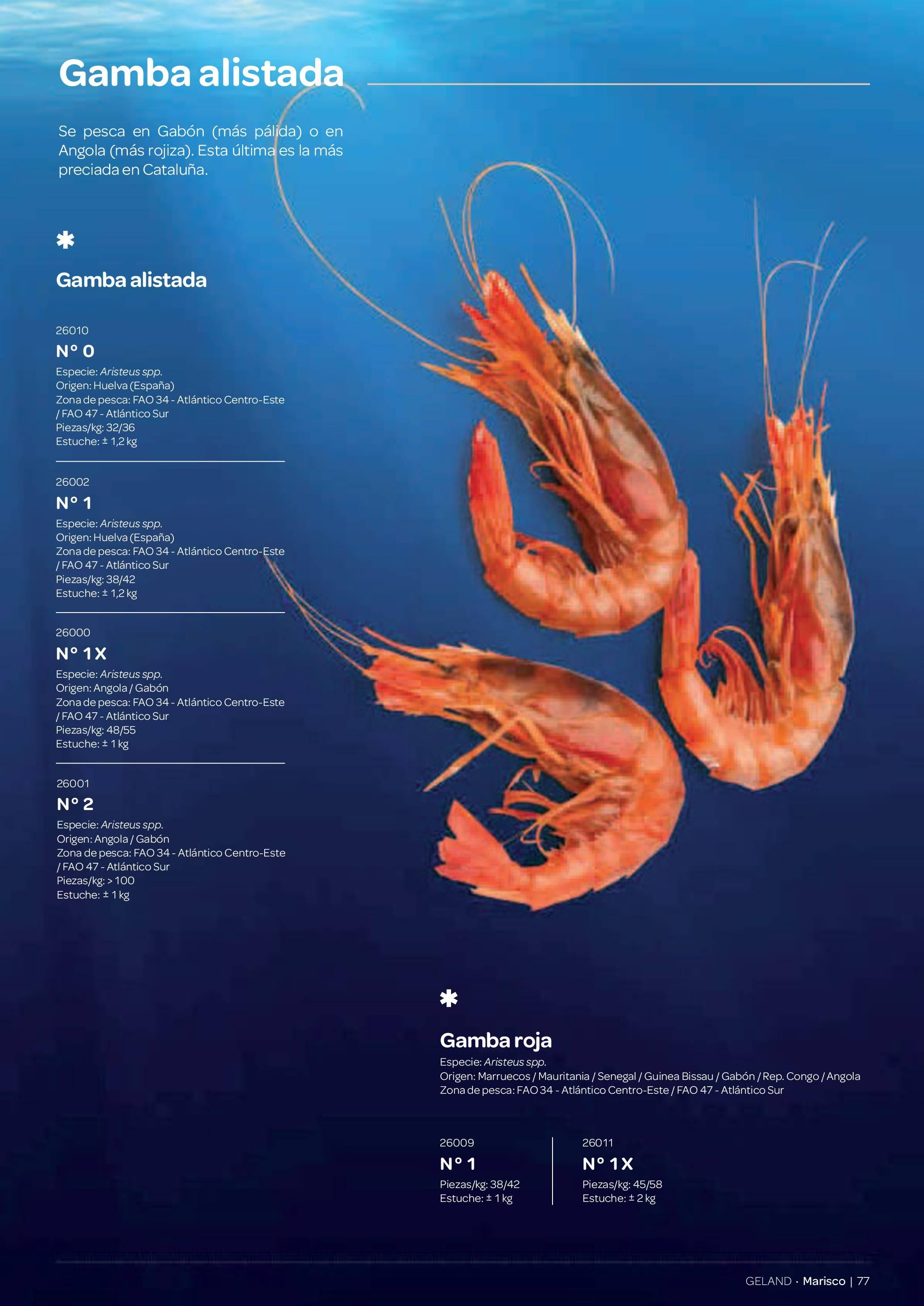 Gamma Productes del Mar - Pàg. 077